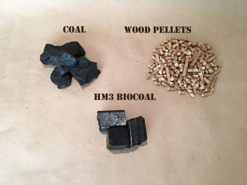 Photo of coal wood pellets and biocoal